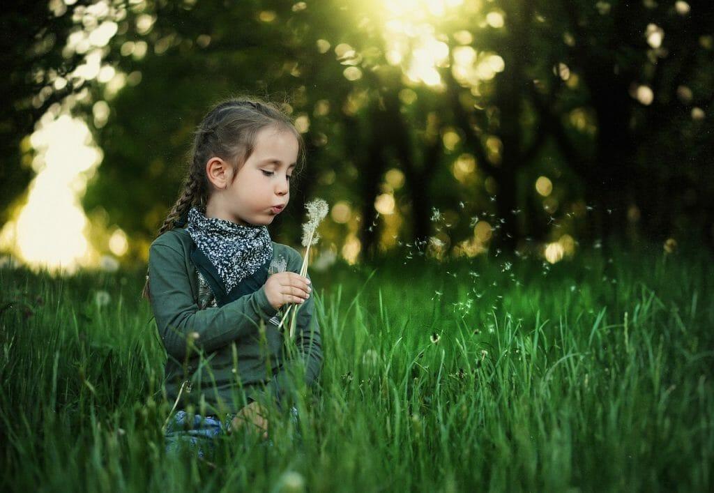 Kind auf einer Wiese mit Pusteblumen / ©pixabay