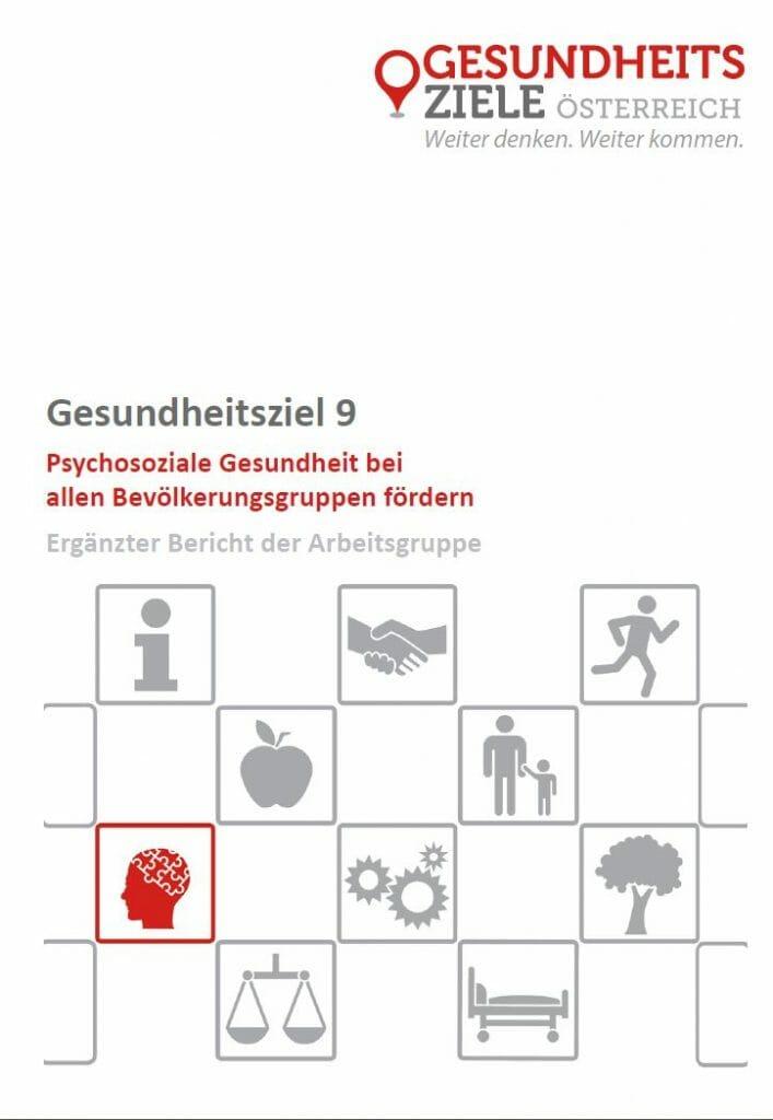 Ergänzter Bericht der Arbeitsgruppe zum Gesundheitsziel 9